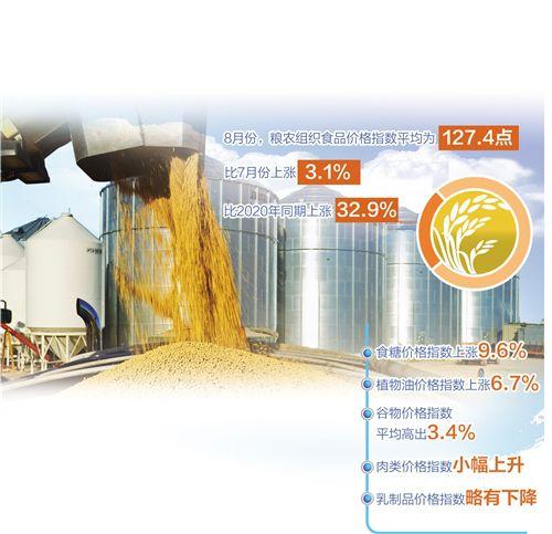 盛煌:全球粮食大宗商品价格止跌反弹(图1)